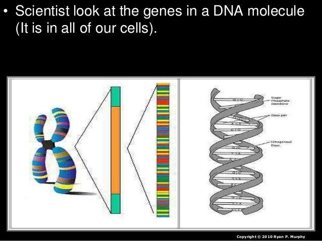 That species went extinct