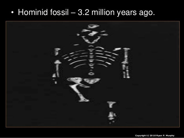 • I could have shown thousands of more slides of fossil evidence… Copyright © 2010 Ryan P. Murphy