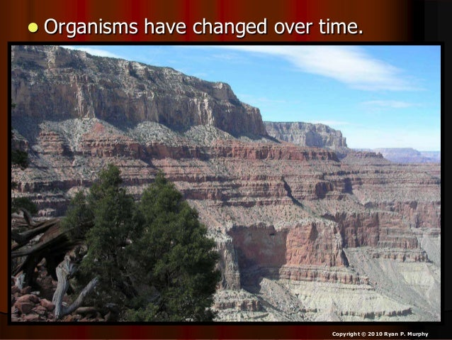 • The entire four year curriculum can be found at... http://sciencepowerpoint.com/ Please feel free to contact me with any...