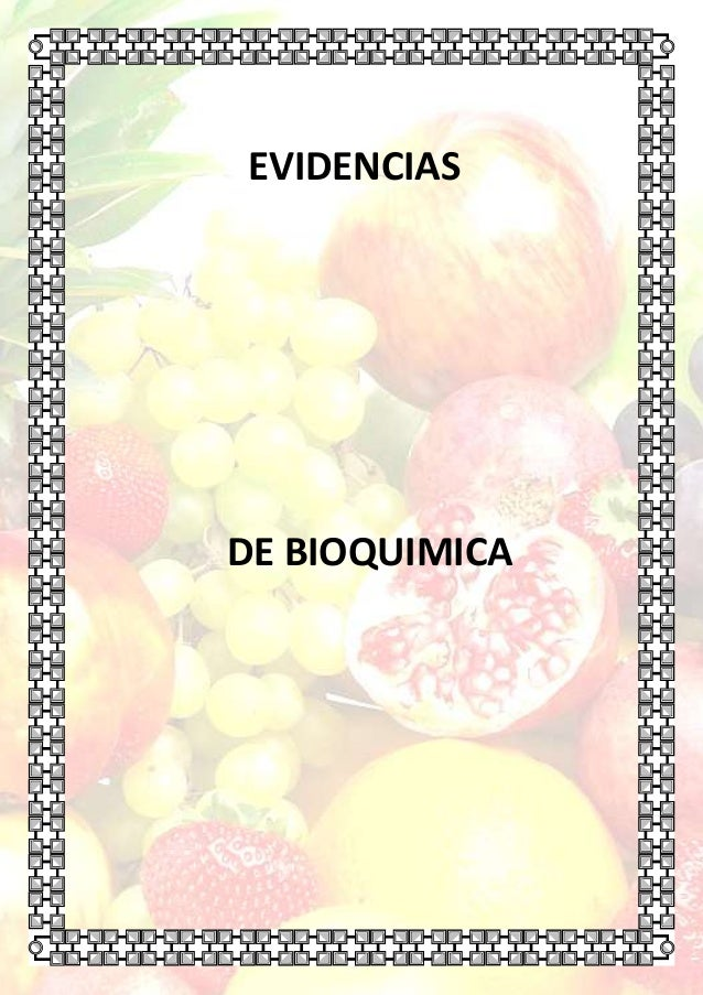 EVIDENCIAS  DE BIOQUIMICA