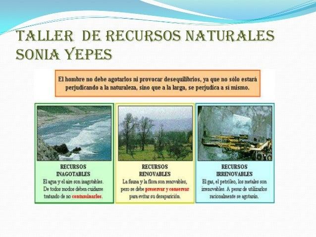 Evidencia N 2 Recursos Naturales