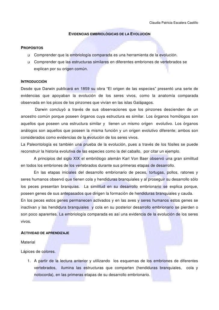 Claudia Patricia Escalera Castillo                              EVIDENCIAS EMBRIOLÓGICAS DE LA EVOLUCIÓN   PROPÓSITOS    ...