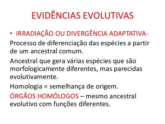 EVIDÊNCIAS EVOLUTIVAS • IRRADIAÇÃO OU DIVERGÊNCIA ADAPTATIVAProcesso de diferenciação das espécies a partir de um ancestra...
