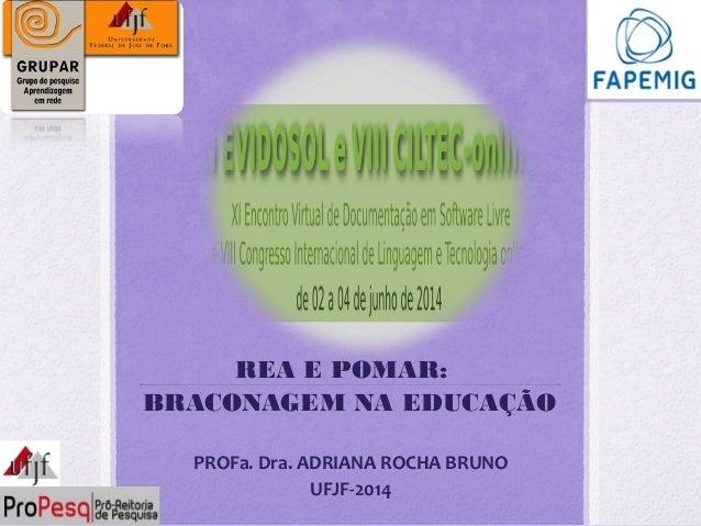 REA E POMAR: BRACONAGEM NA EDUCAÇÃO PROFa. Dra. ADRIANA ROCHA BRUNO UFJF-2014