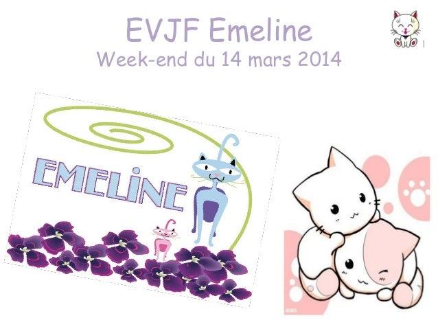 EVJF Emeline  Week-end du 14 mars 2014
