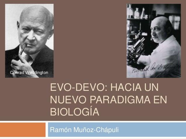 EVO-DEVO: HACIA UN NUEVO PARADIGMA EN BIOLOGÍA Ramón Muñoz-Chápuli