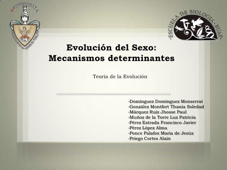 Evolución del Sexo:Mecanismos determinantes        Teoría de la Evolución                      •Domínguez   Domínguez Mons...