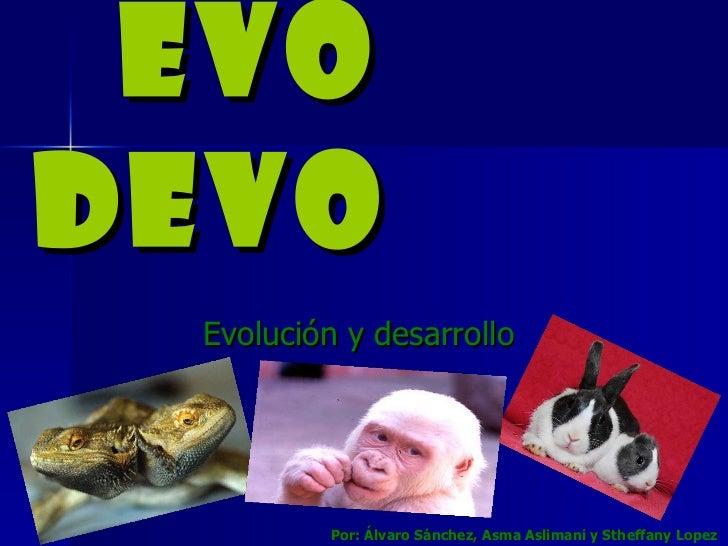 EVO DEVO Evolución y desarrollo Por: Álvaro Sánchez, Asma Aslimani y Stheffany Lopez