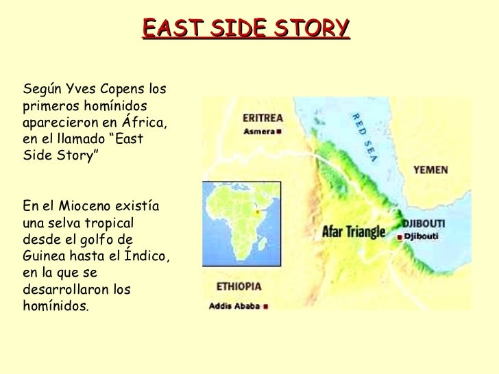 """EAST SIDE STORY Según Yves Copens los primeros homínidos aparecieron en África, en el llamado """"East Side Story"""" En el Mioc..."""