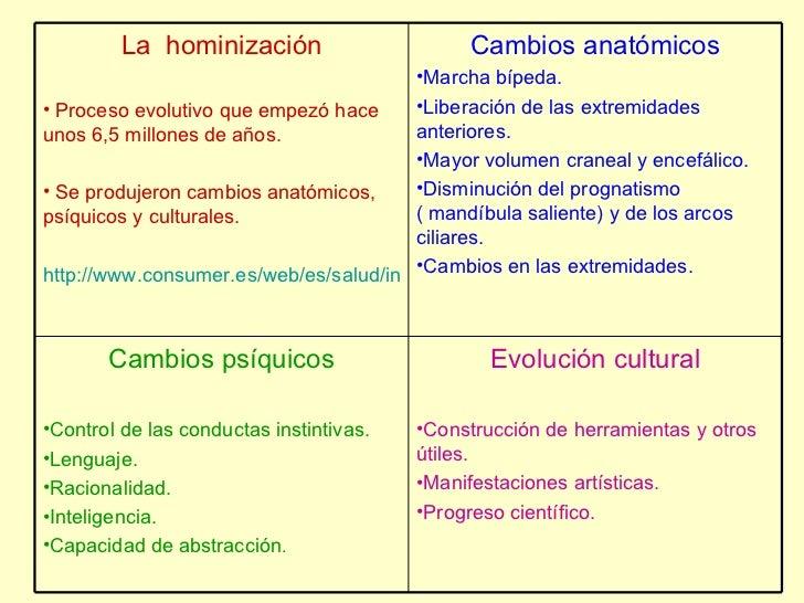 <ul><li>La  hominización </li></ul><ul><li>Proceso evolutivo que empezó hace unos 6,5 millones de años. </li></ul><ul><li>...