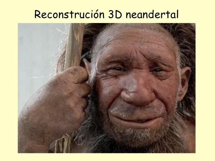 Reconstrución 3D neandertal