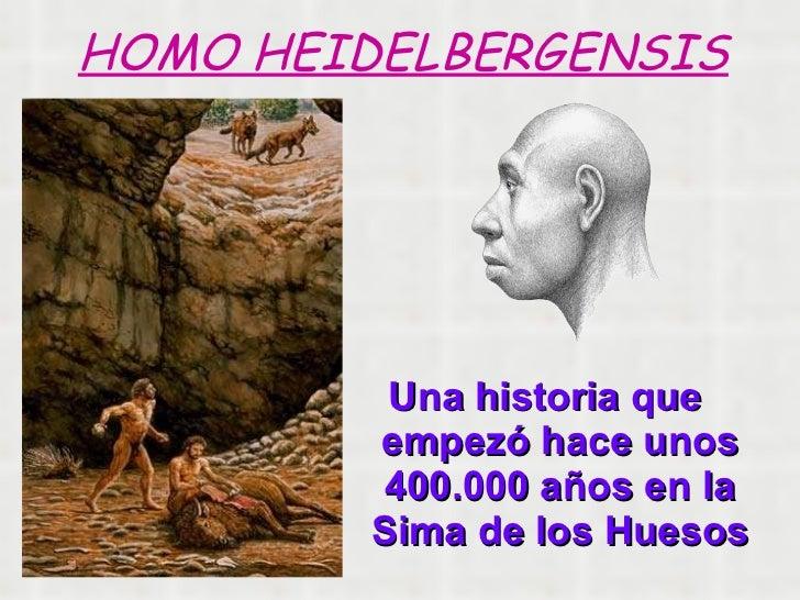<ul><li>Una historia que empezó hace unos 400.000 años en la Sima de los Huesos </li></ul>HOMO HEIDELBERGENSIS