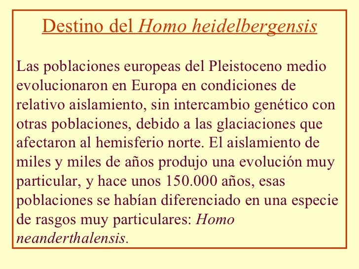 Destino del  Homo heidelbergensis Las poblaciones europeas del Pleistoceno medio evolucionaron en Europa en condiciones de...