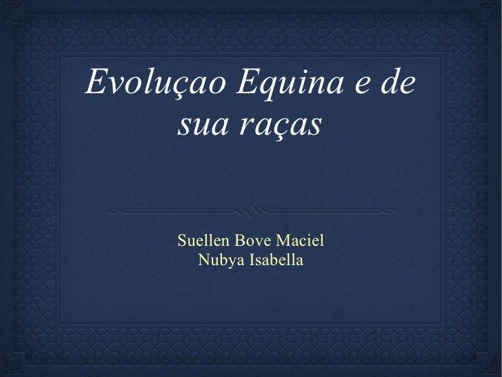 Evoluçao Equina e de sua raças <ul><li>Suellen Bove Maciel </li></ul><ul><li>Nubya Isabella </li></ul>