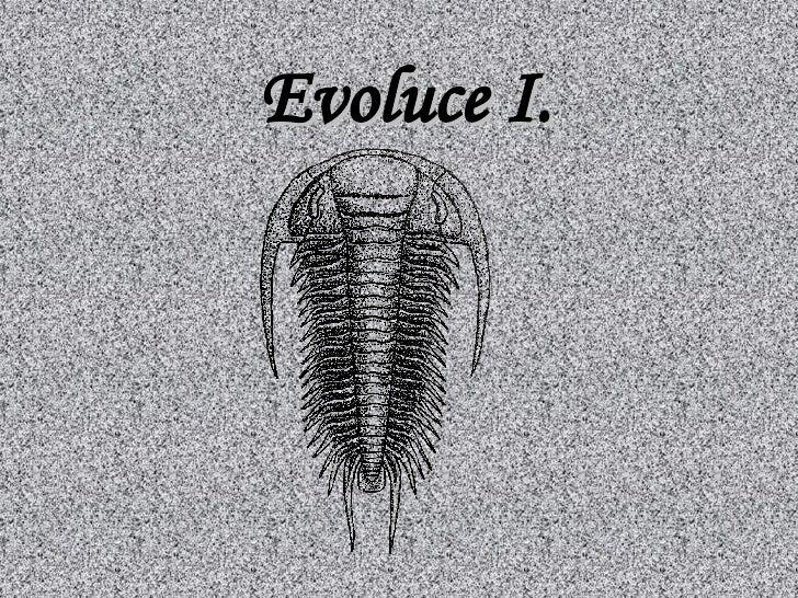 Evoluce I.