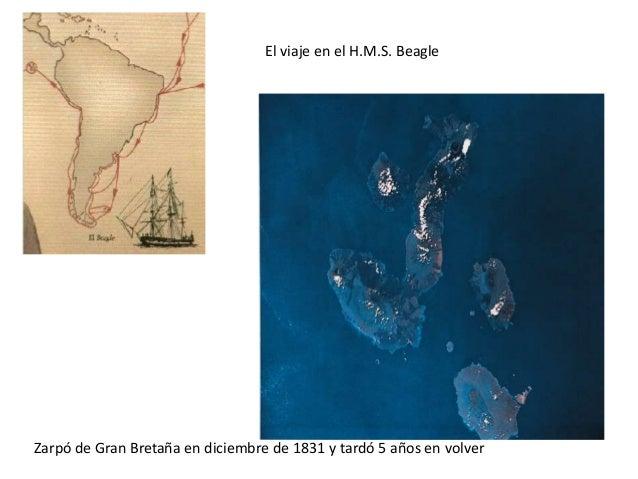 Mecanismos de la evolución• Selección natural• Mutaciones• Migraciones• Deriva génicahttp://evolution.berkeley.edu/evolibr...