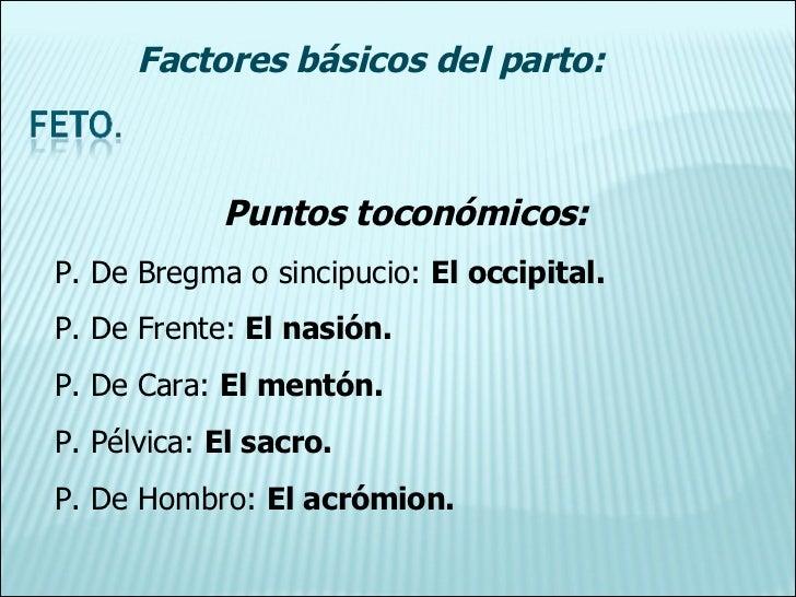 Puntos toconómicos: P. De Bregma o sincipucio:  El occipital. P. De Frente:  El nasión. P. De Cara:  El mentón. P. Pélvica...