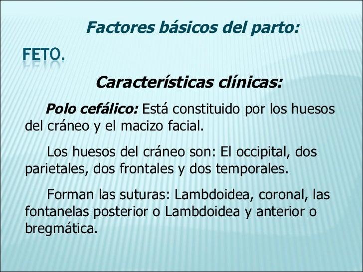 Características clínicas: Polo cefálico:  Está constituido por los huesos del cráneo y el macizo facial. Los huesos del cr...