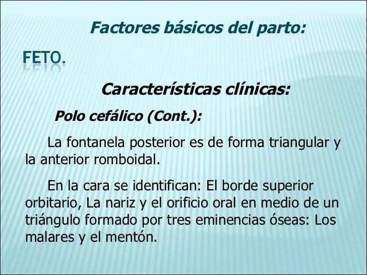 Características clínicas: Polo cefálico (Cont.): La fontanela posterior es de forma triangular y la anterior romboidal. En...