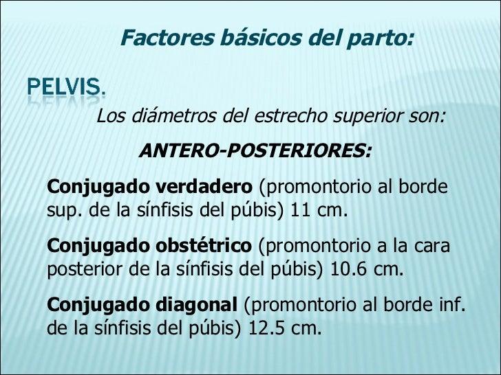 Los diámetros del estrecho superior son: ANTERO-POSTERIORES: Conjugado verdadero  (promontorio al borde sup. de la sínfisi...