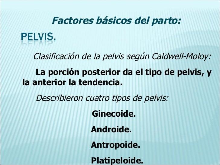 Clasificación de la pelvis según Caldwell-Moloy: La porción posterior da el tipo de pelvis, y la anterior la tendencia. De...