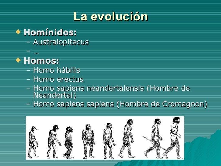 La evolución <ul><li>Homínidos: </li></ul><ul><ul><li>Australopitecus </li></ul></ul><ul><ul><li>… </li></ul></ul><ul><li>...