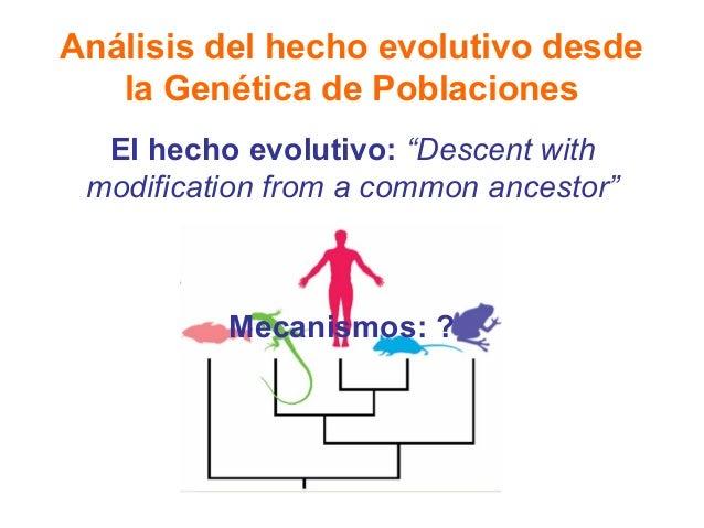 """Análisis del hecho evolutivo desde la Genética de Poblaciones El hecho evolutivo: """"Descent with modification from a common..."""