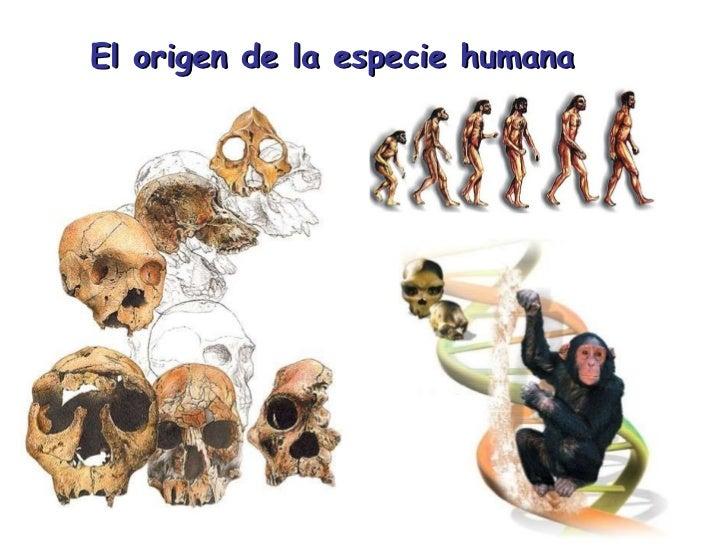 El origen de la especie humana