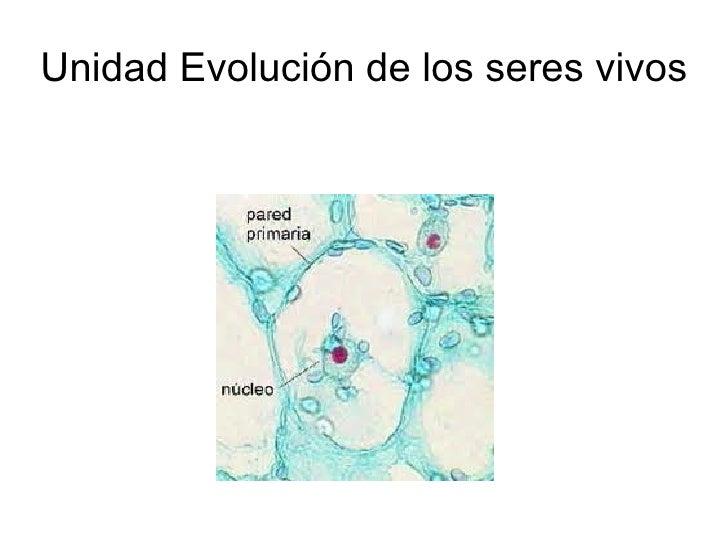 Unidad Evolución de los seres vivos