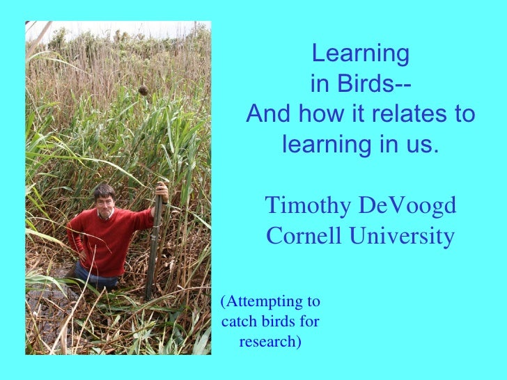 Learning in Birds-- And how it relates to learning in us. Timothy DeVoogd Cornell University (Attempting to catch birds fo...