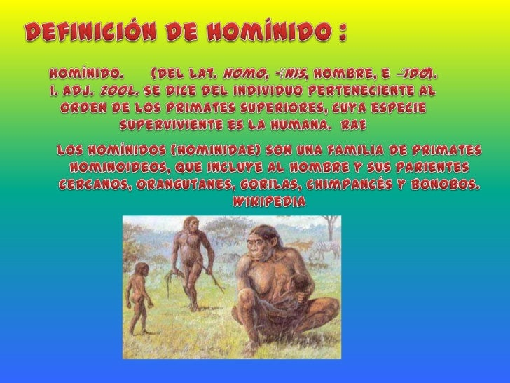 Evolucion hominidos y paleol tico for Definicion de cuarto