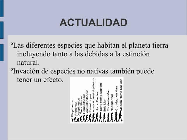 ACTUALIDADºLas diferentes especies que habitan el planeta tierra  incluyendo tanto a las debidas a la estinción  natural.º...