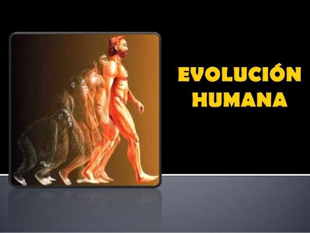 Esqueleto con grandes diferencias anatómicas entre as extremidades anteriores e posteriores. Mans e pes prensiles, con cin...