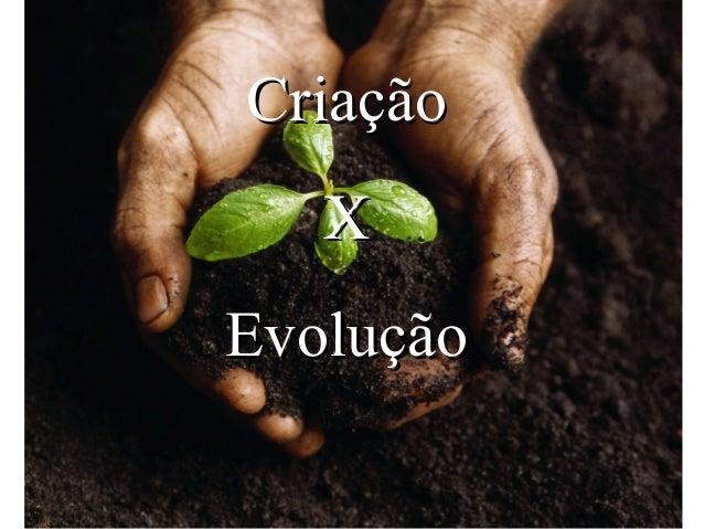 Criação   XEvolução
