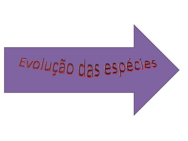 O que é aevolução?  Evolução é o processo através no    qual ocorrem as mudanças ou transformações nos seres vivos ao  lon...
