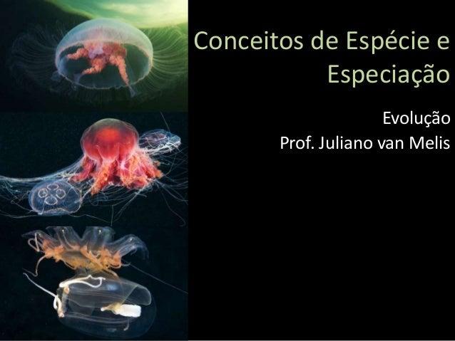 Conceitos de Espécie e Especiação Evolução Prof. Juliano van Melis