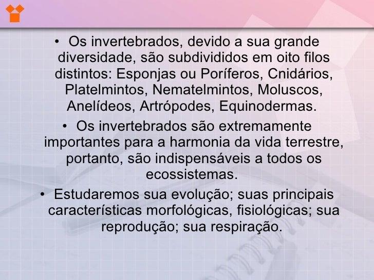 EvoluçãO Dos Invertebrados Slide 2
