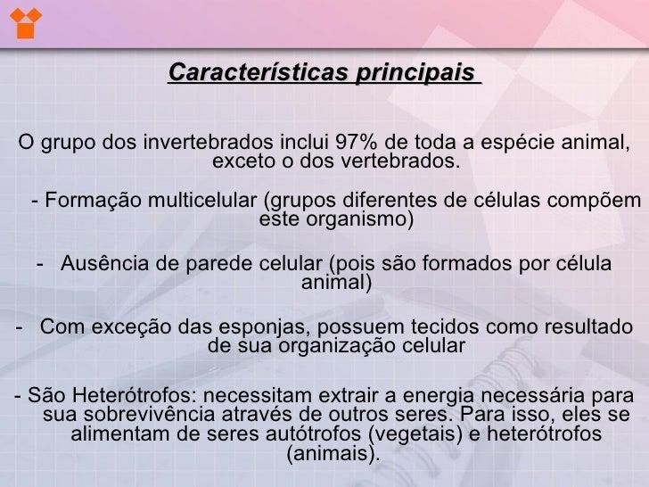 EvoluçãO Dos Invertebrados Slide 3