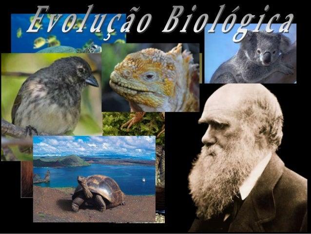Por que estudar evolução?