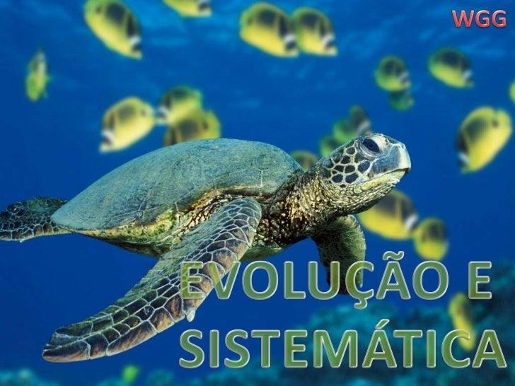 WGG<br />EVOLUÇÃO E<br /> SISTEMÁTICA<br />