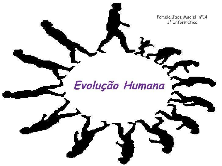Evolução Humana Pamela Jade Maciel, nº14 3º Informática