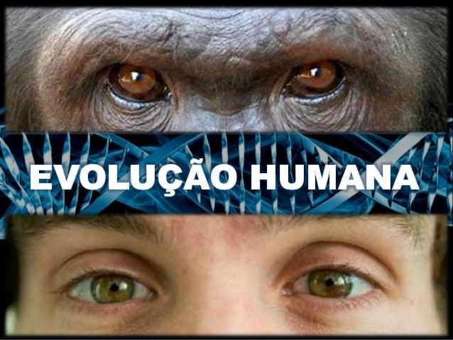 EVOLUÇÃO HUMANA Retrocede a 6 milhões de anos Ponto onde linhagem humana diverge da dos Chimpanzés Registros fósseis revel...