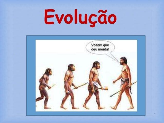1 Evolução