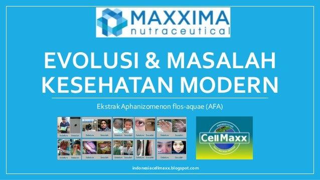 EVOLUSI & MASALAH KESEHATAN MODERN Ekstrak Aphanizomenon flos-aquae (AFA) indonesiacellmaxx.blogspot.com