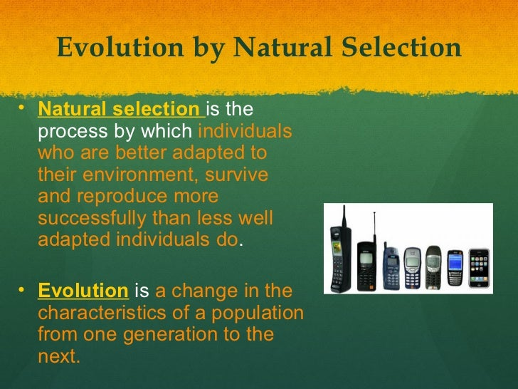 Why Is Adaptation Important In Natural Selection