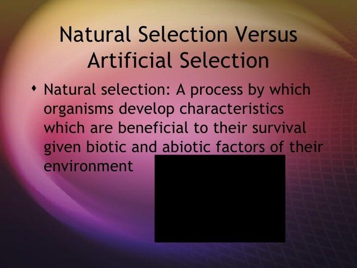 Natural Selection Versus Artificial Selection