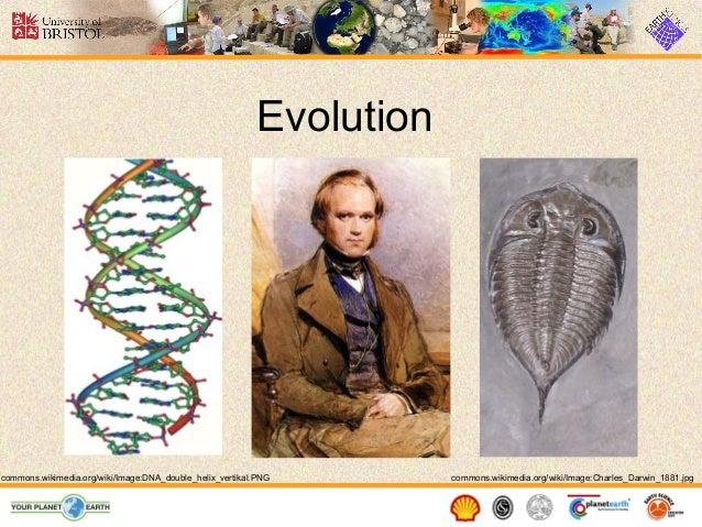 Evolution  commons.wikimedia.org/wiki/Image:DNA_double_helix_vertikal.PNG  commons.wikimedia.org/wiki/Image:Charles_Darwin...