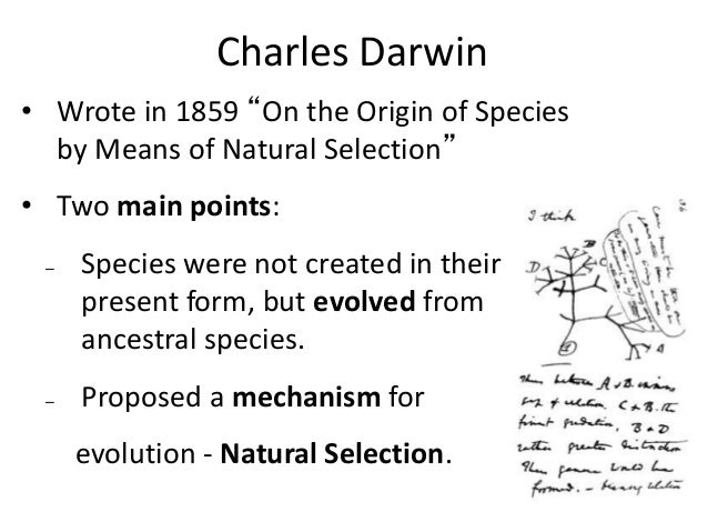 Theory Of Evolution Theory Of Evolution Main Points