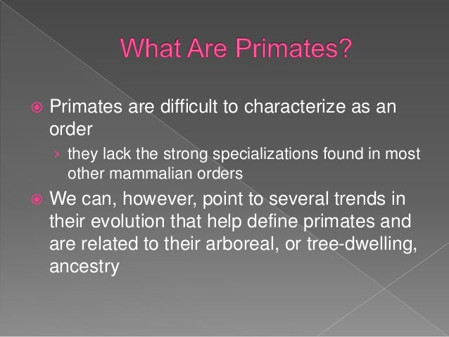 The Evolution in Primate Locomotion and Body Configuration