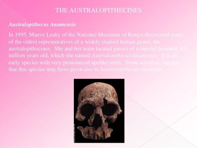 Homo erectus 1995 part 1 8